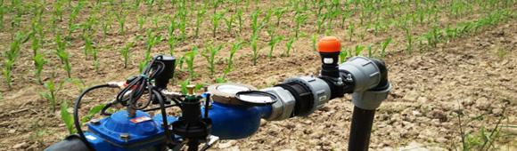 irrigation ma s au goutte goutte enterr chambre d. Black Bedroom Furniture Sets. Home Design Ideas